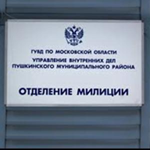 Отделения полиции Холмогоров
