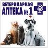 Ветеринарные аптеки в Холмогорах