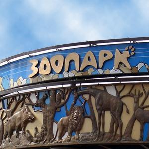 Зоопарки Холмогоров